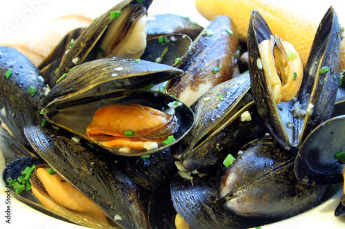 Photo Stands Seafoods Steamed Mussels