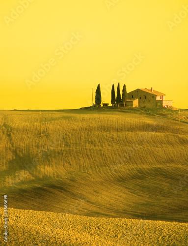 Poster Jaune tuscan landscape
