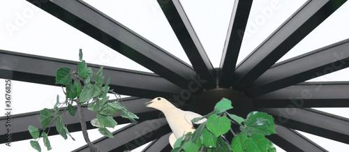 White Bird in Aerie Canvas Print