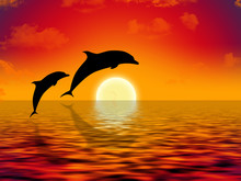 Illustration Of Two Dolphins S...