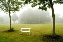 Deserted White Bench