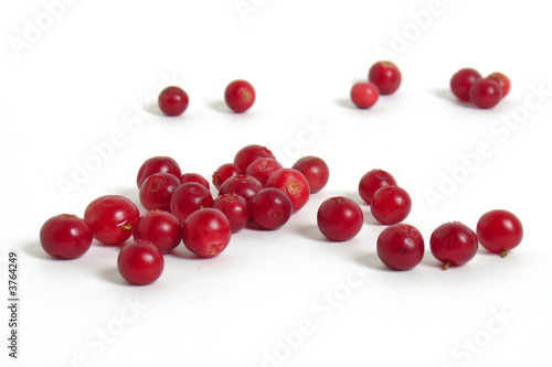 Fotografia  Scattering of cranberries on white background