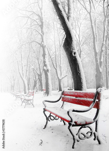 Fototapety, obrazy: Red benches in the fog in winter