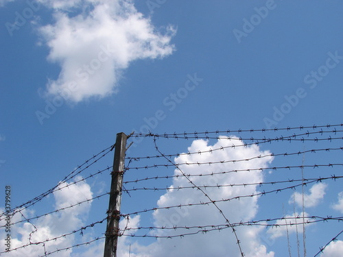 Valokuva  Cloudy blue sky with rugged wire fence 3