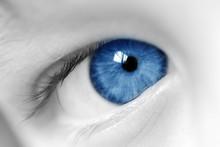 See Through A Child's Eye