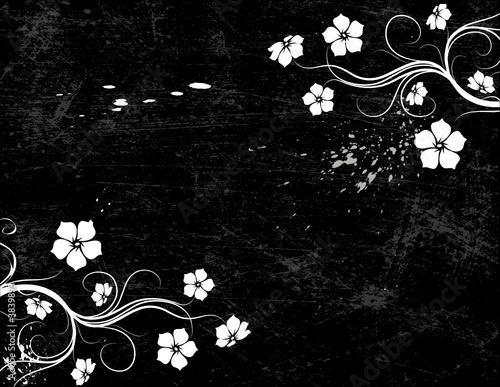 Staande foto Bloemen zwart wit Floral background.