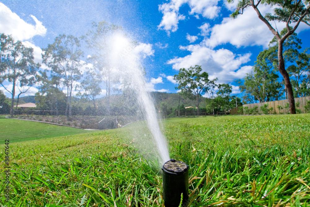 Fototapety, obrazy: Sprinkler watering lawn grass