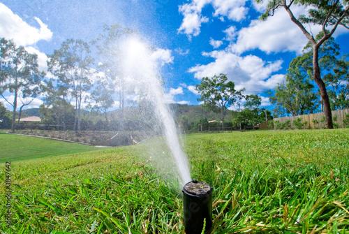 Obraz Sprinkler watering lawn grass - fototapety do salonu