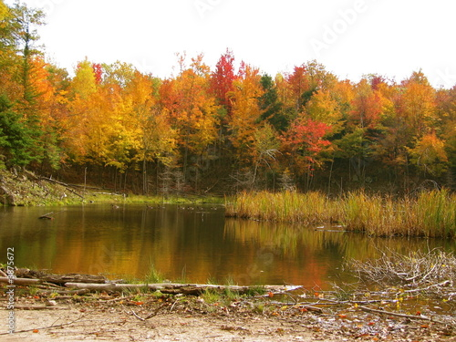 Fototapety, obrazy: Indian Summer in Canada