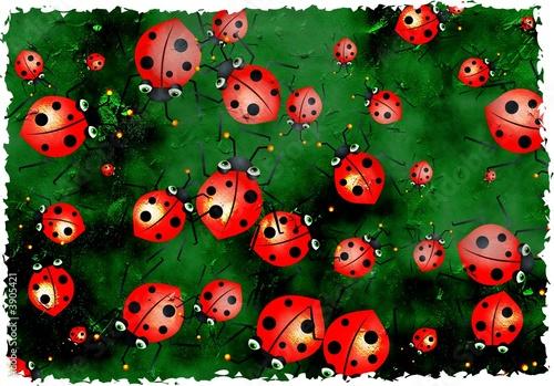Foto op Canvas Lieveheersbeestjes grunge ladybugs