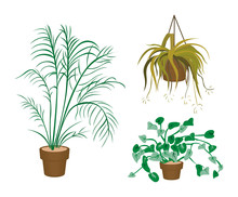 Decorating Plants Icons With Clipping Paths