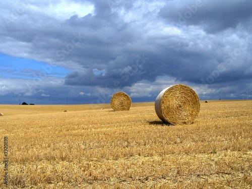 Foto op Aluminium Blauw nach der Ernte