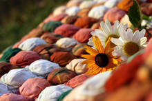 Quilt In Warm Autumn Colors With Daisies