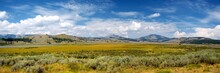 Panoramic View Of Hayden Valley, Yellowstone NP (WY)