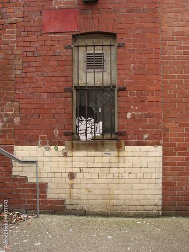 Monkey in prison Wallpaper Mural