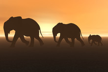 3D Render Of A Group Of Elepha...