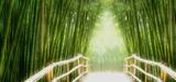 Fototapeta Bamboo - Bambus-Allee