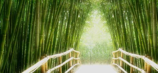 Fototapeta Bambus Bambus-Allee