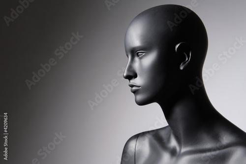 Photo mannequin