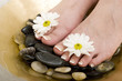 canvas print picture Foot spa