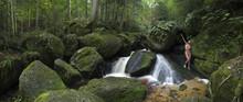 Frauenakt Im Waldpanorama