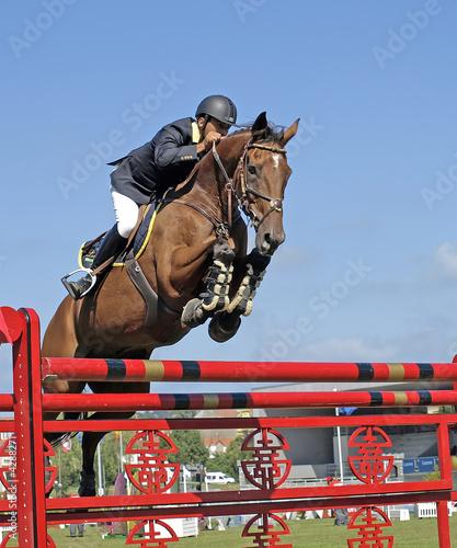 Cuadros en Lienzo Jinete y caballo