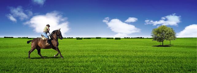 Jinete y caballo en paisaje panoramico.