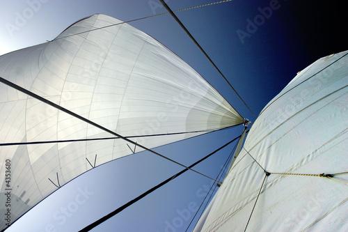 Photo sur Toile Les Textures Voiles de catamaran.