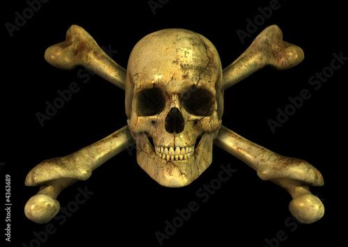 Photo  Grunge Skull Crossbones