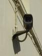 CCTV_Black_Snake_1