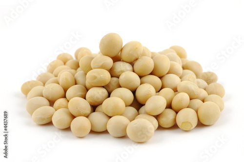 Canvastavla Close up of soy beans