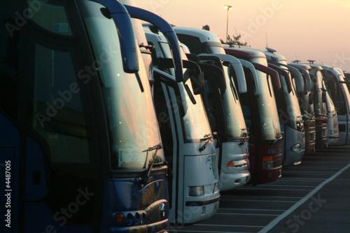 Fotografie, Obraz Fila di autobus al tramonto