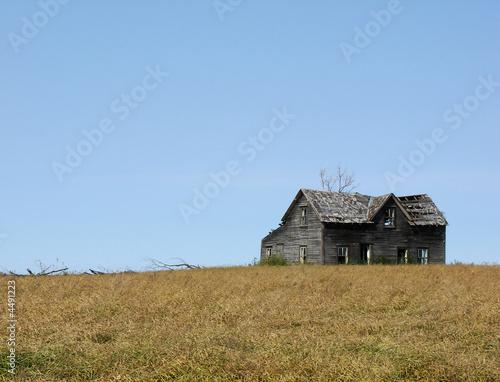 Poster Sheep Abandoned Farm House