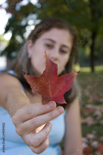 Spoed Foto op Canvas Canada Red Leaf