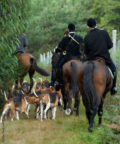 Fotobehang Jacht meute de chiens et cavaliers