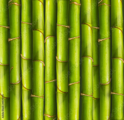 Foto-Kissen - Bamboo background