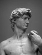 canvas print picture - Museum Replica David 1