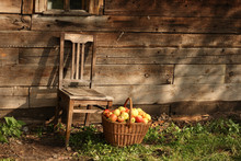 Chair And Basketful Of Apples