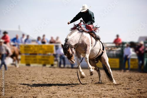 Fotomural  Saddle Bronc