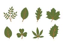 Set Of Vector Leaf Shapes