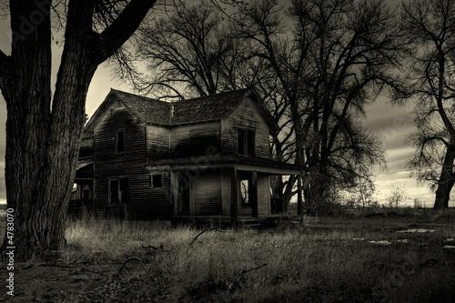 Photo  haunted house monochrome