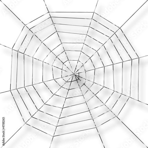 Fotografie, Obraz  toile d'araignée,