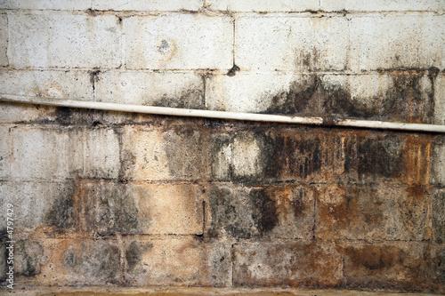 Fotografia, Obraz  Water damaged and moldy basement wall