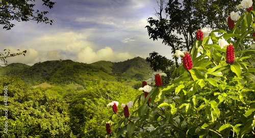 costa rica Canvas Print