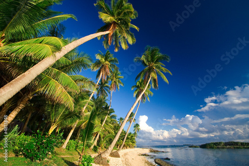 Foto-Kissen - Beautiful tropical beach paradise (von Tommy Schultz)