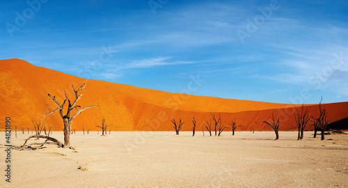 Poster de jardin Desert de sable Dead trees in Dead Vlei - Sossusvlei, Namib desert, Namibia.