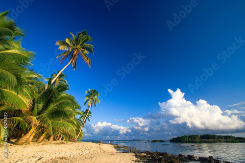 Foto-Leinwand - Beautiful tropical beach paradise