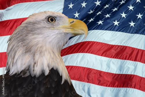 Deurstickers Eagle Patriotic Bald Eagle
