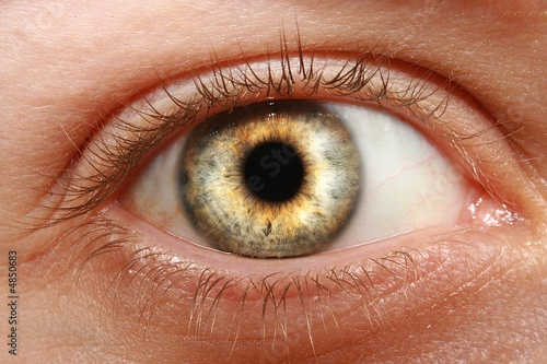 Foto op Aluminium Iris Blick C