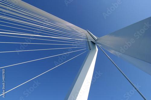 Staande foto Rotterdam Erasmusbridge Rotterdam